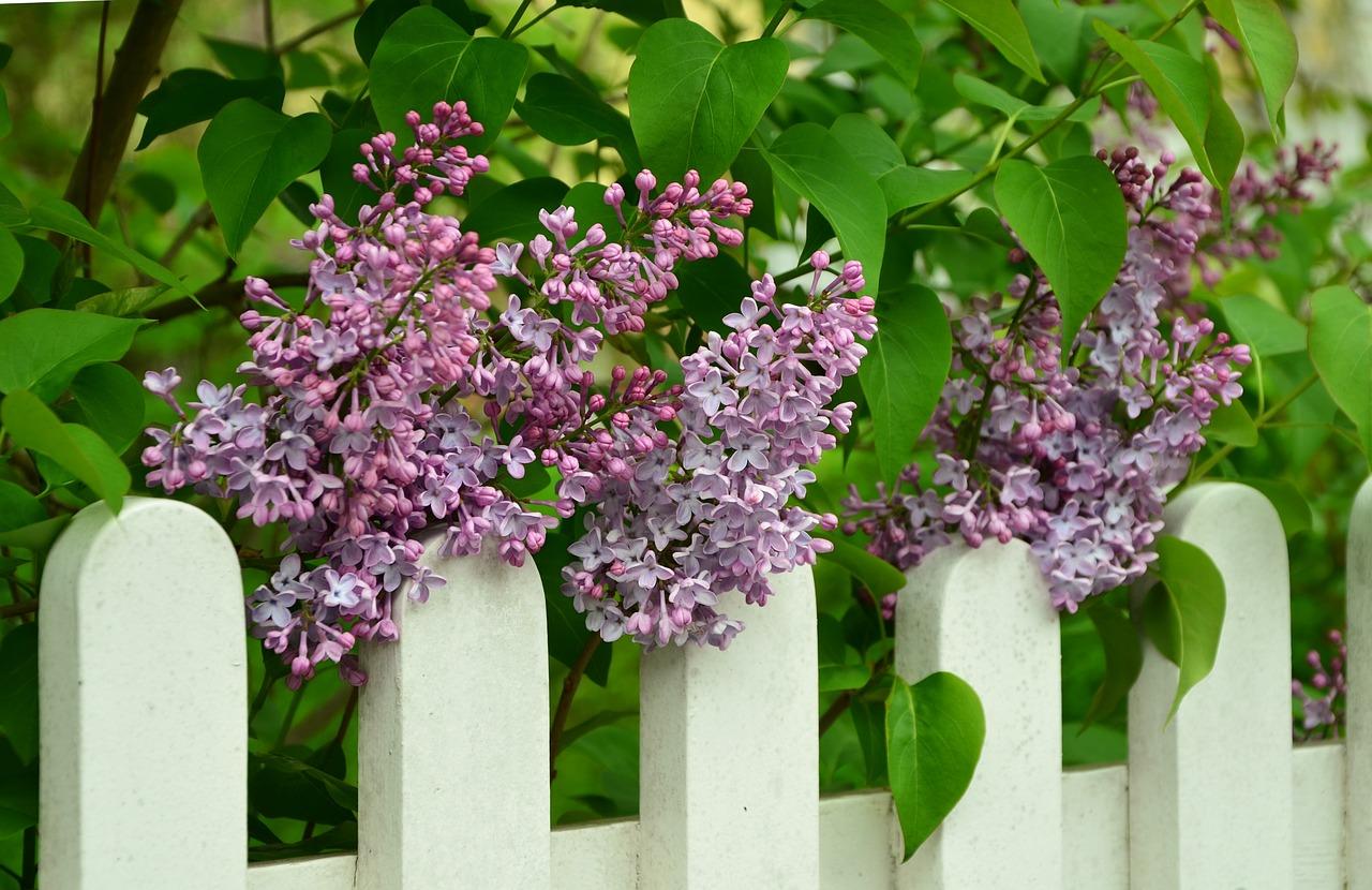 Les différents types de matériaux pour sa clôture de jardin